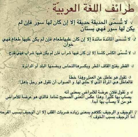 طرائف اللغة العربية Wisdom Quotes Beautiful Arabic Words Life Words