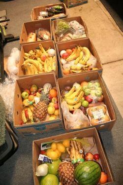 secret freegan rescuing food to feed homeless misc pinterest
