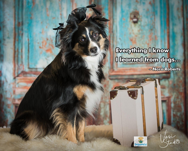 Vasi Siedman is a pet photographer based in Florida, USA
