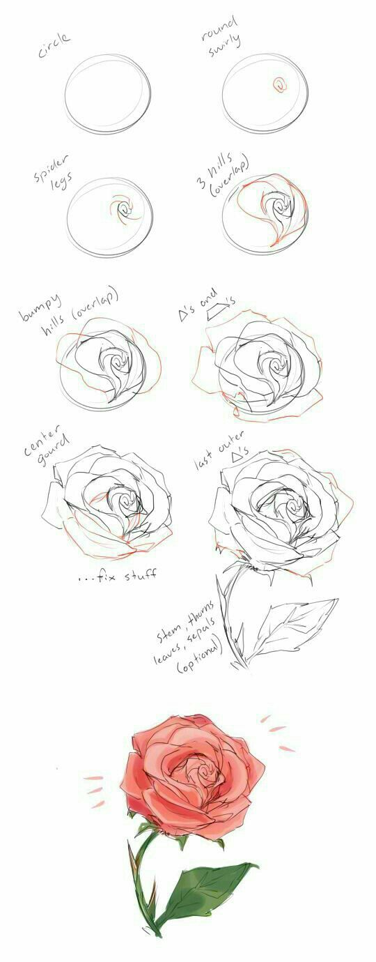 How to draw se pic 814
