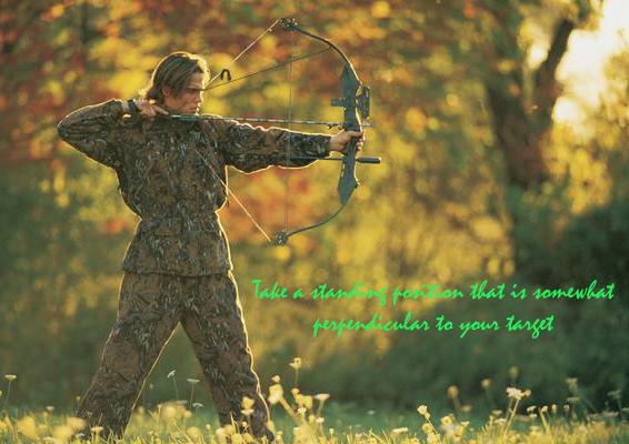 How to Shoot a Compound Bow (Có hình ảnh)