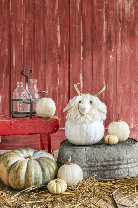 75 Super Creative Pumpkin Decorating Ideas To Try This