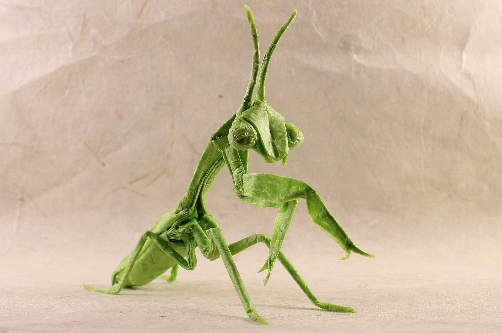 Complex Origami Diagrams Mantis Praying Wiring For Dummies Advanced Diagram Sipho Mabona By Malleon Pinterest Rh Com Crane