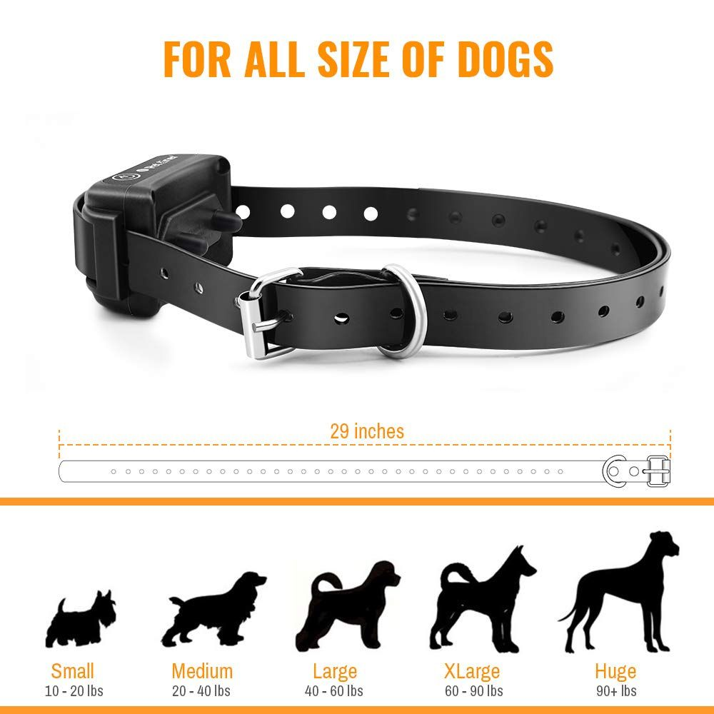 Petrainer Pet916 2 Dog Training Collar 100 Waterproof Dog Shock