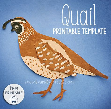 Quail (with FREE printable template) | Learn Create Love | moses