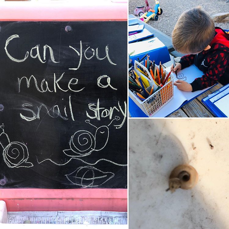 """Miss Sue🌵Cactus Blossom Kids on Instagram: """"Snail inquiry continues🐌 #snail #snailinquiry #science #presschoolscience #gardencreatures"""""""