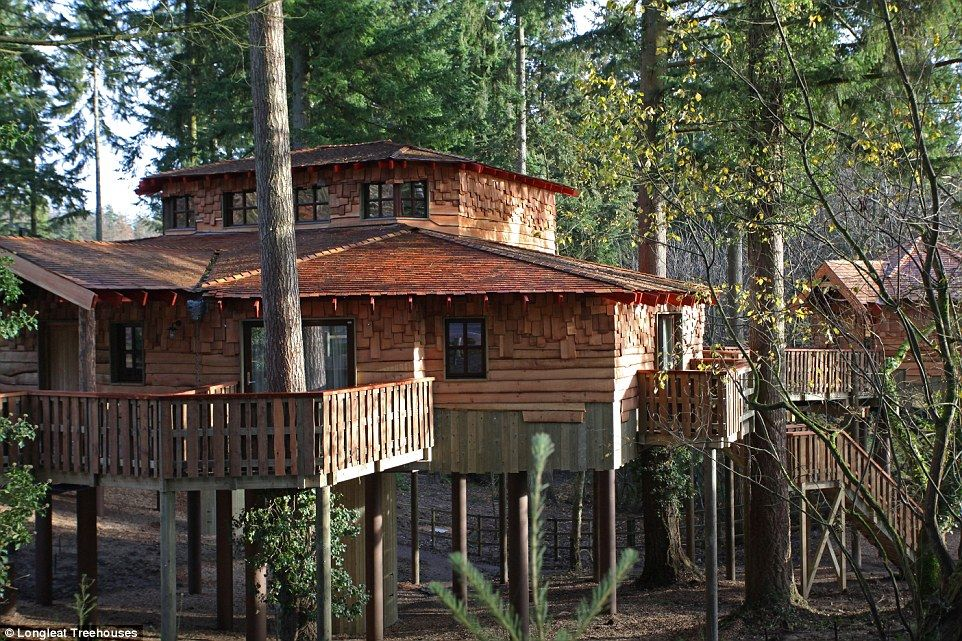 Treehouses at Center Parcs, Longleat Forest      In Longleat Forest there are three luxury, two-storey options, nestled in a quiet corner ...