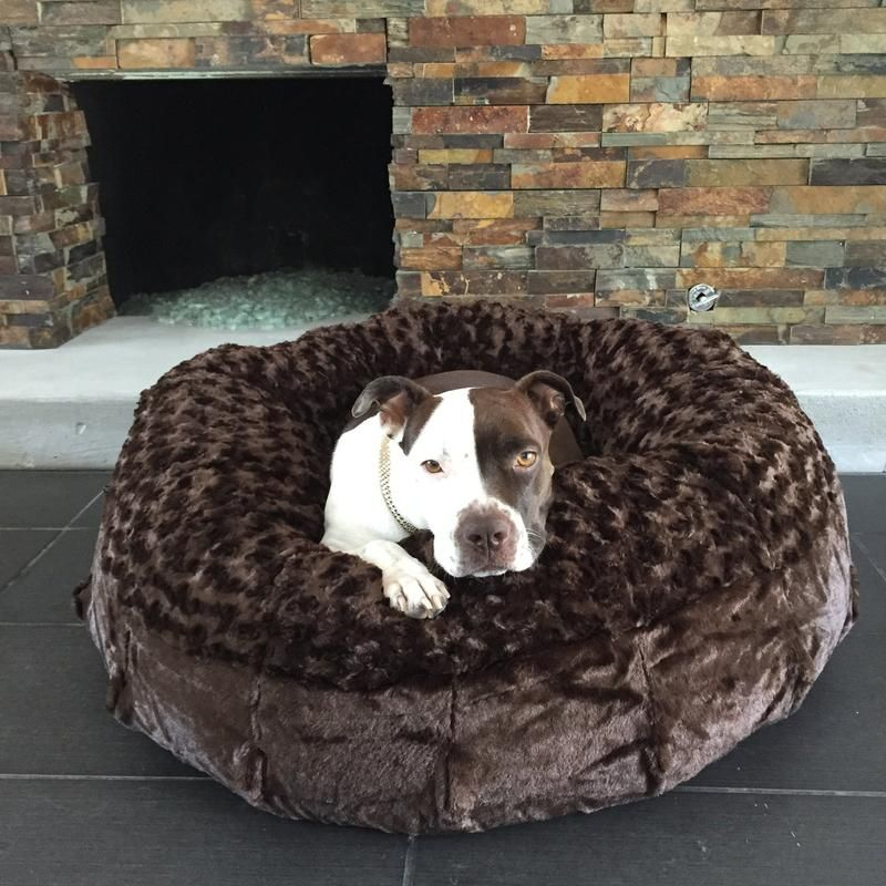 Katie Puff® Orthopedic Luxury Dog Bed Animals matter
