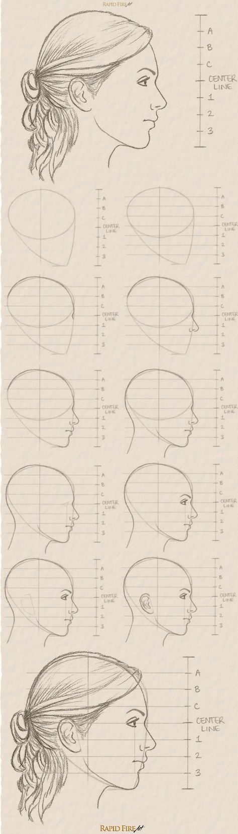 Photo of 11 steps on how to draw a female face (side view)