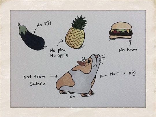 The English language - The Meta Picture