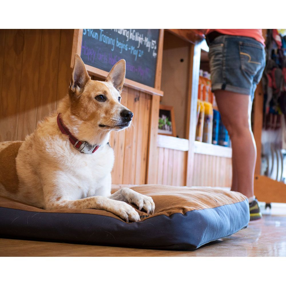 Ruffwear Urban Sprawl Dog Bed Review (With images) Dog