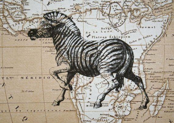 Carte Afrique Tl.Zebre Sur La Carte De L Afrique 5 X 7 Zebra Carte Imprimer