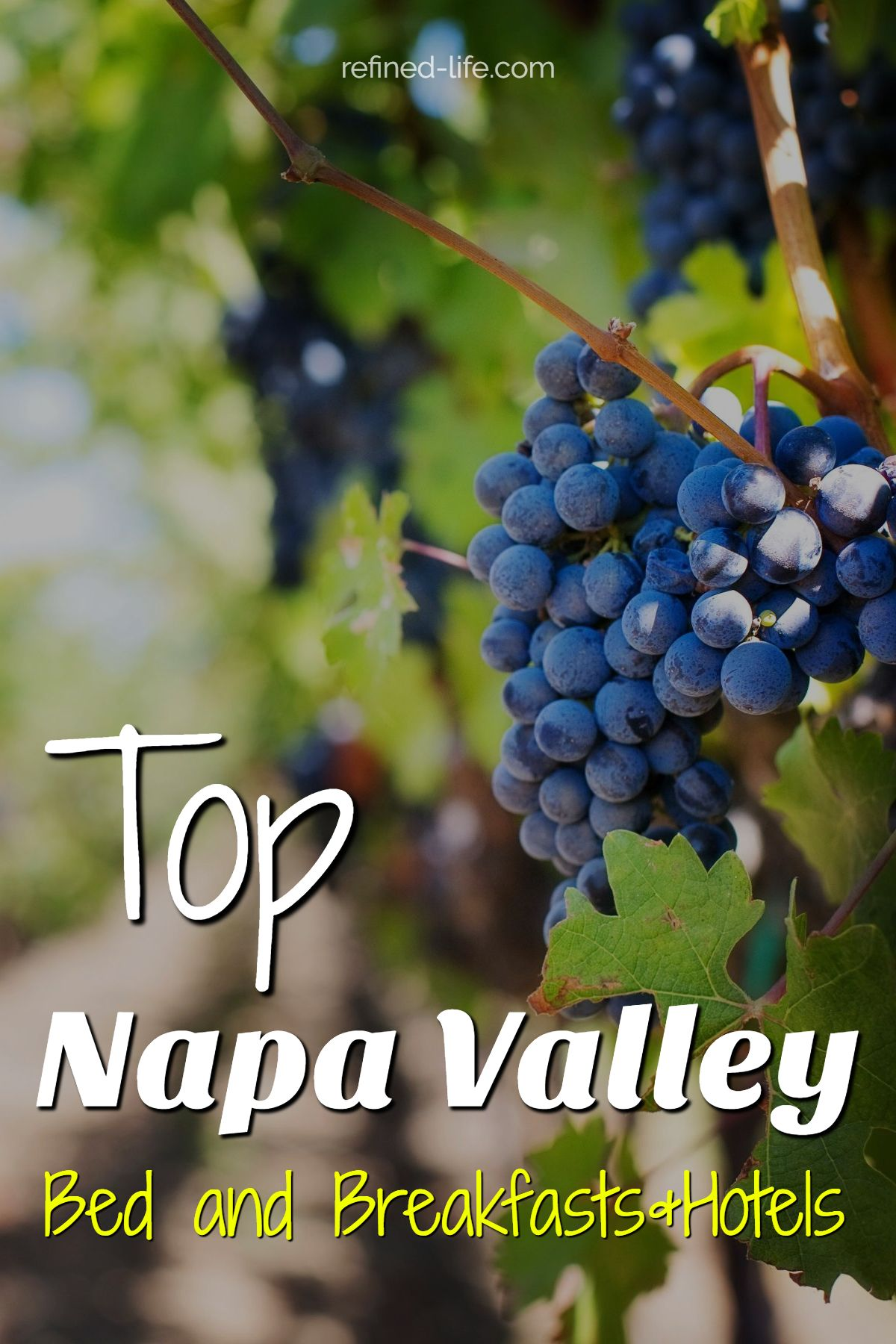 Napa Valley Bed and Breakfast Top Rated B&B Napa Valley