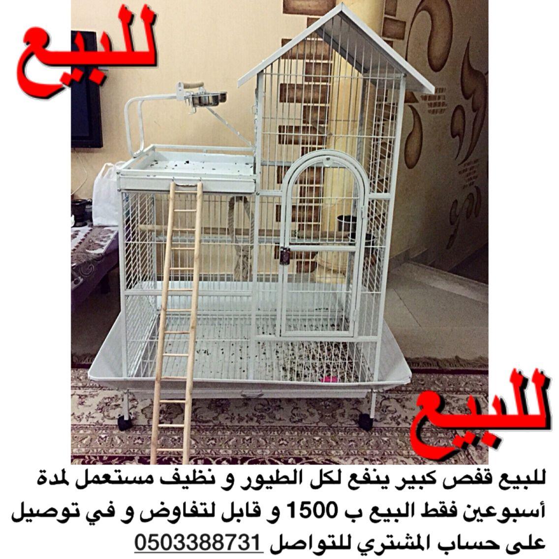 للبيع قفص كبير ينفع لكل الطيور و نظيف مستعمل لمدة أسبوعين فقط البيع ب 1500 و قابل لتفاوض و في توصيل على حساب المشتري للتواصل 050338873 Home Decor Decor Storage