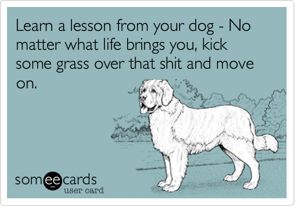 Lessons from the Dog!