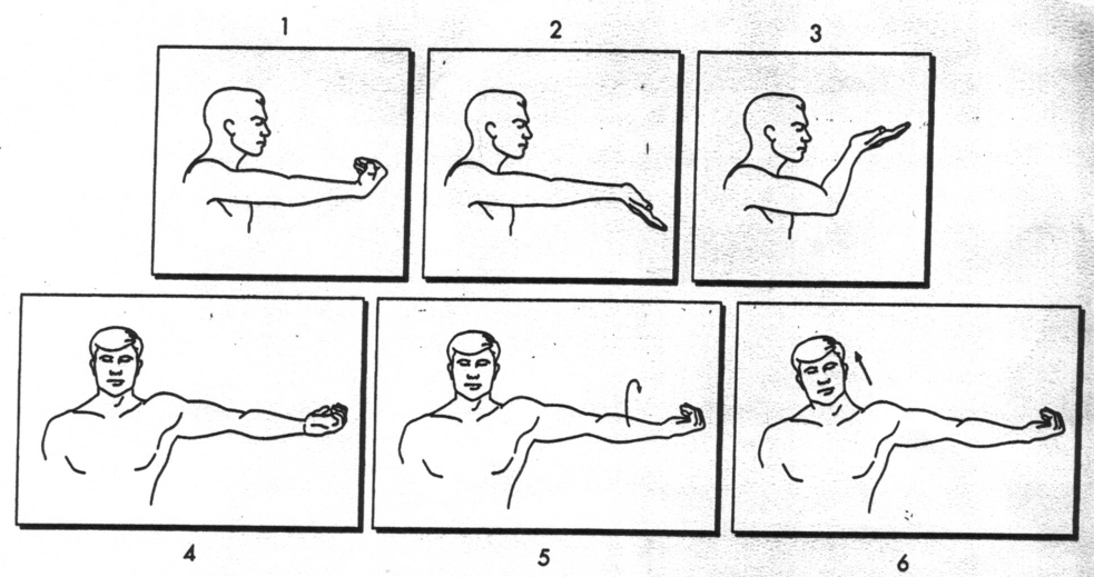 Ulnar Nerve Glide Exercises. These exercises have been a