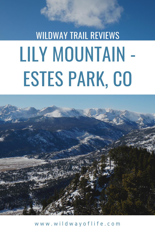 Trail Reviews Lily Mountain Estes Park Co In 2020 Estes Park Trail Park