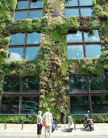 Vertical Garden: Patrick Blanc\'s living wall for the Musee ...