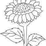 Unduh 820 Koleksi Gambar Bunga Matahari Untuk Di Warnai HD Gratid