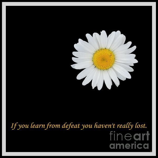 You Haven't Really Lost by Barbara Griffin. If you learn from defeat you haven't really lost.