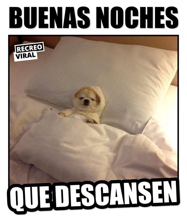 17 Memes Que Son Mejor Que Un Simple Buenas Noches Buenas Noches Memes Postales De Buenas Noches