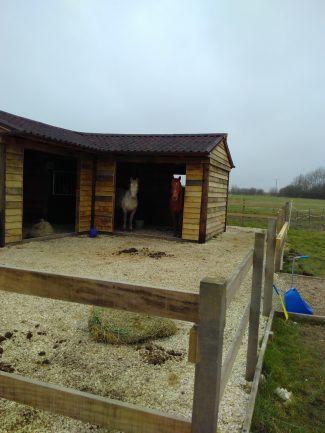 Building the Mega Shelter aka Pony Palace
