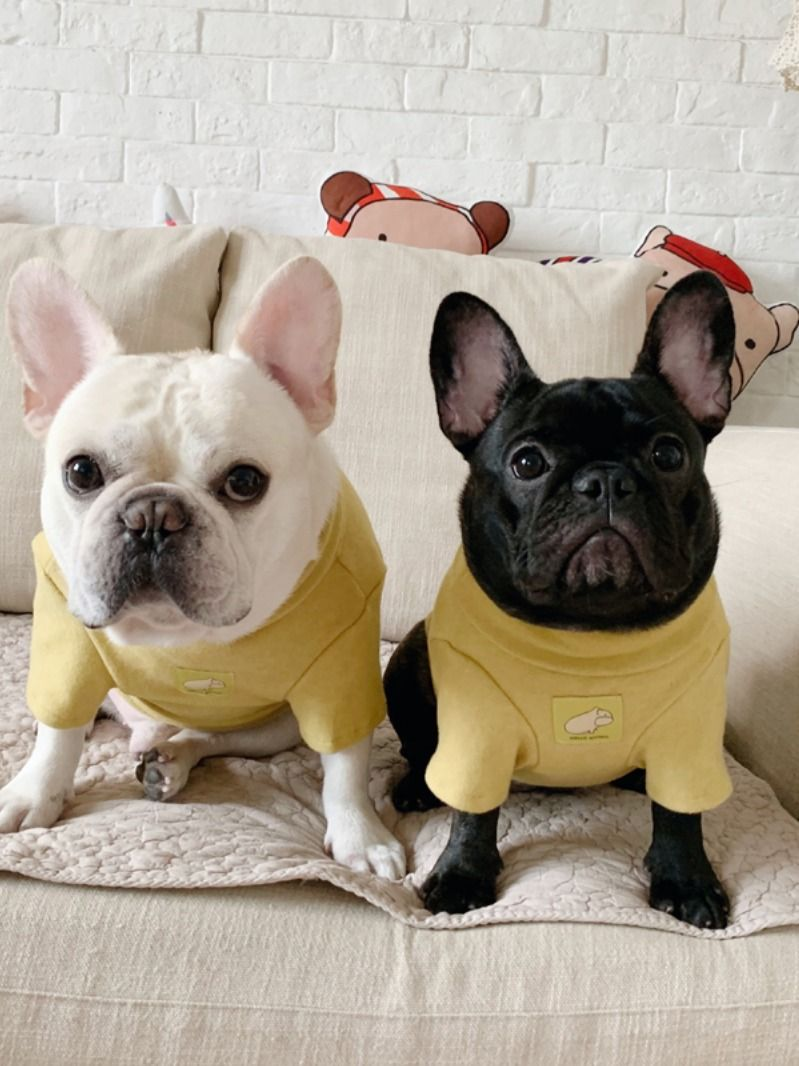 Comfy Sweater Hoodies Coat Jacket For French Bulldog Medium Dogs