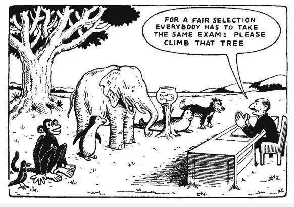 think the educational system is fair to everyone?