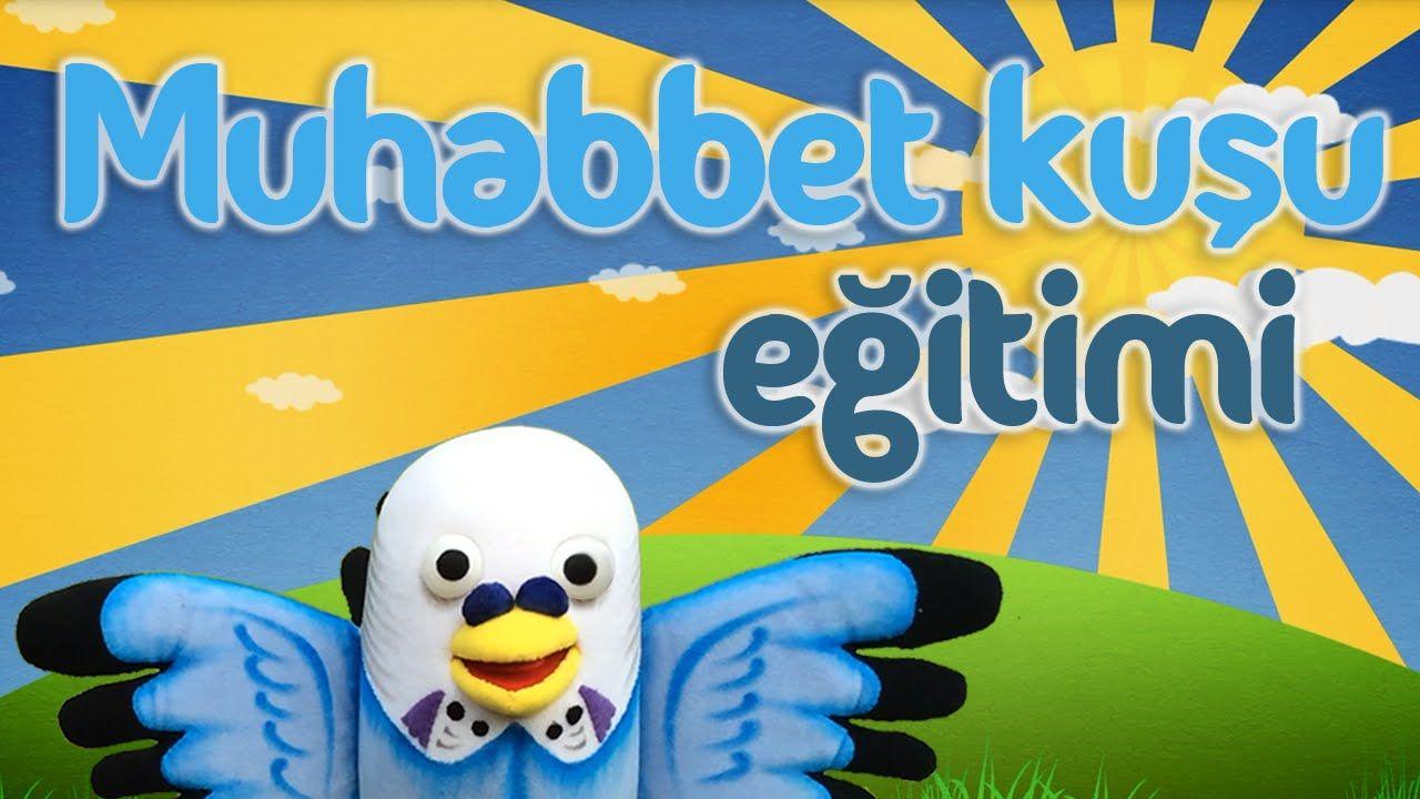 Muhabbet kuşu eğitimi - Muhabbetkusum.com