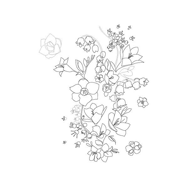 Floral Illustrations Liked On Polyvore Featuring Fillers Backgrounds Flowers Drawings Doodles Effects Text Quotes De Words Cool Words Beautiful Words