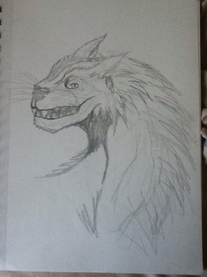 a drawing of a wolf dragon i did