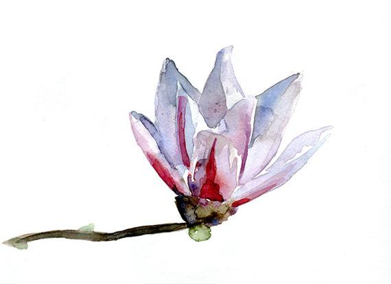 Magnolia bloem Waterverf schilderij. Origineel door Zendrawing, €32.50