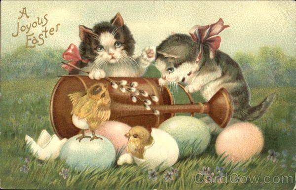 Открытки кроликом-котом