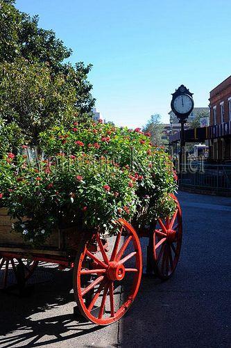 00144829 Savannah Chat Savannah Historic District Travel Savannah