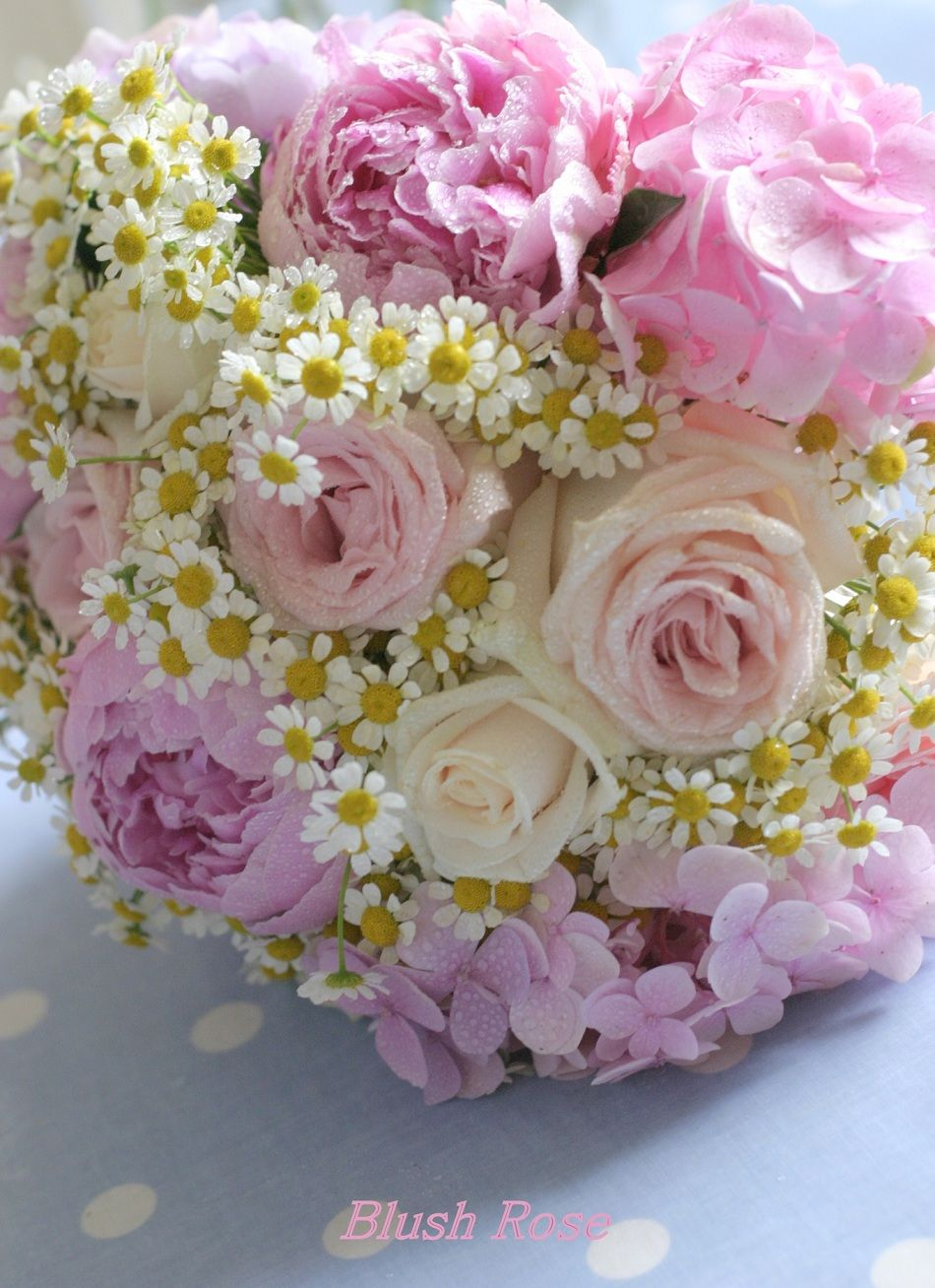 peonies and chamomille daisies. pastel vintage style wedding bouquet. www.blushrose.co.uk
