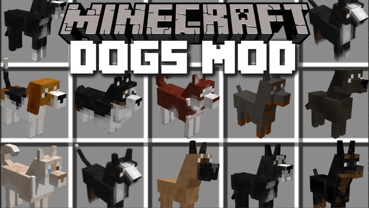 Minecraft Pets Mod Villagers Go Shopping For Dogs Minecraft Minecraft Dogs Minecraft Mods For Pe Minecraft Mods
