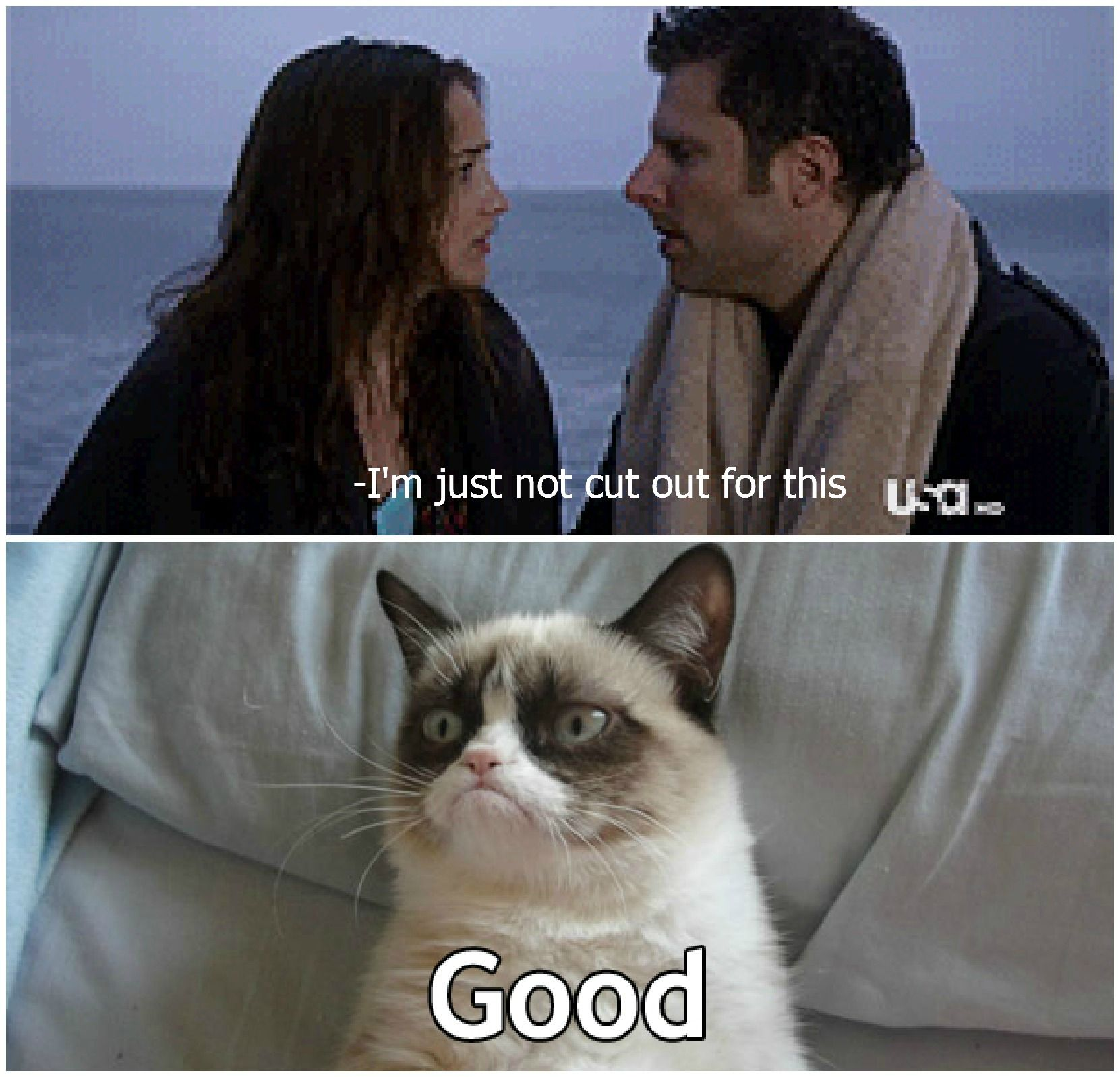Psych And Grumpy Cat