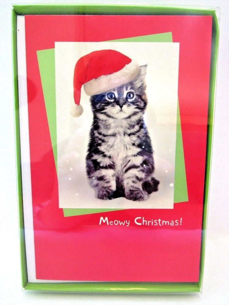 Details about American Greetings Christmas Cards Boxed Kitten Meowy