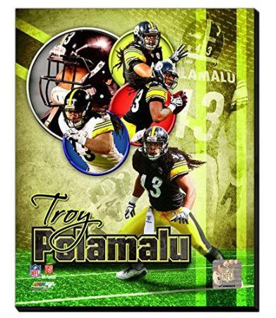 Troy Polamalu Canvas Framed Over With 2 Inches Stretcher Bars-Ready To Hang- Awesome & Beautiful
