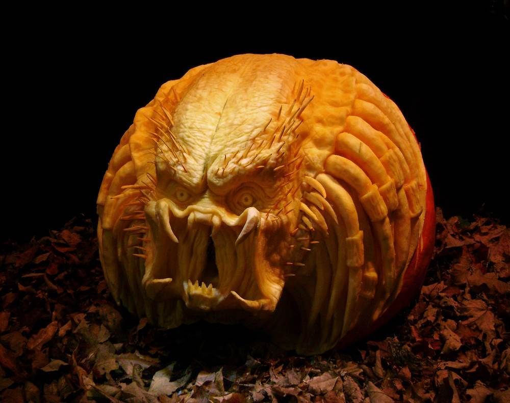 Predator pumpkin | Sye | Pinterest | Pumpkin carvings