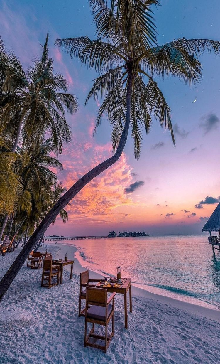 ocean color beach sunset paradise travel water sea