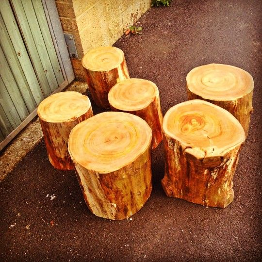 a selection of stumps delivered to north London this morning ready for the grand opening