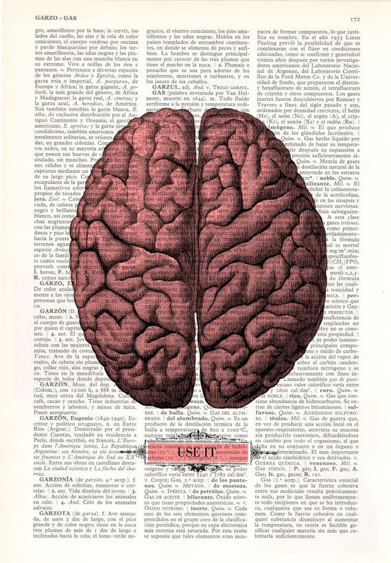 Brain USE IT Human Anatomy art Dictionary Print Human by PRRINT ...