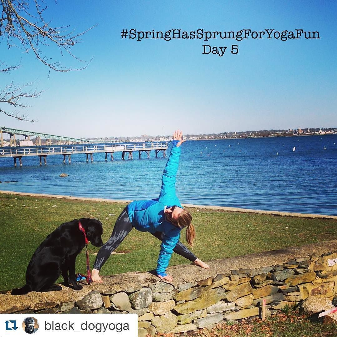 Are you following along with the #SpringHasSprungForYogaFun challenge? The pose for day 5 was #wideleggedforwardfold with a #twist. We love this shot from @black_dogyoga - what a fabulous view!  For complete challenge info visit any of the hosts: @fraliefamily @floridahappycamper @playinginthedesert @rising_phoenix88 @elizabethkoroski  And remember get 20% off your #Yogamatic custom yoga mat purchase this month with code SPRINGYOGA (expires 4/30/2016) - visit Yogamatic.com today! #Yogamatic…