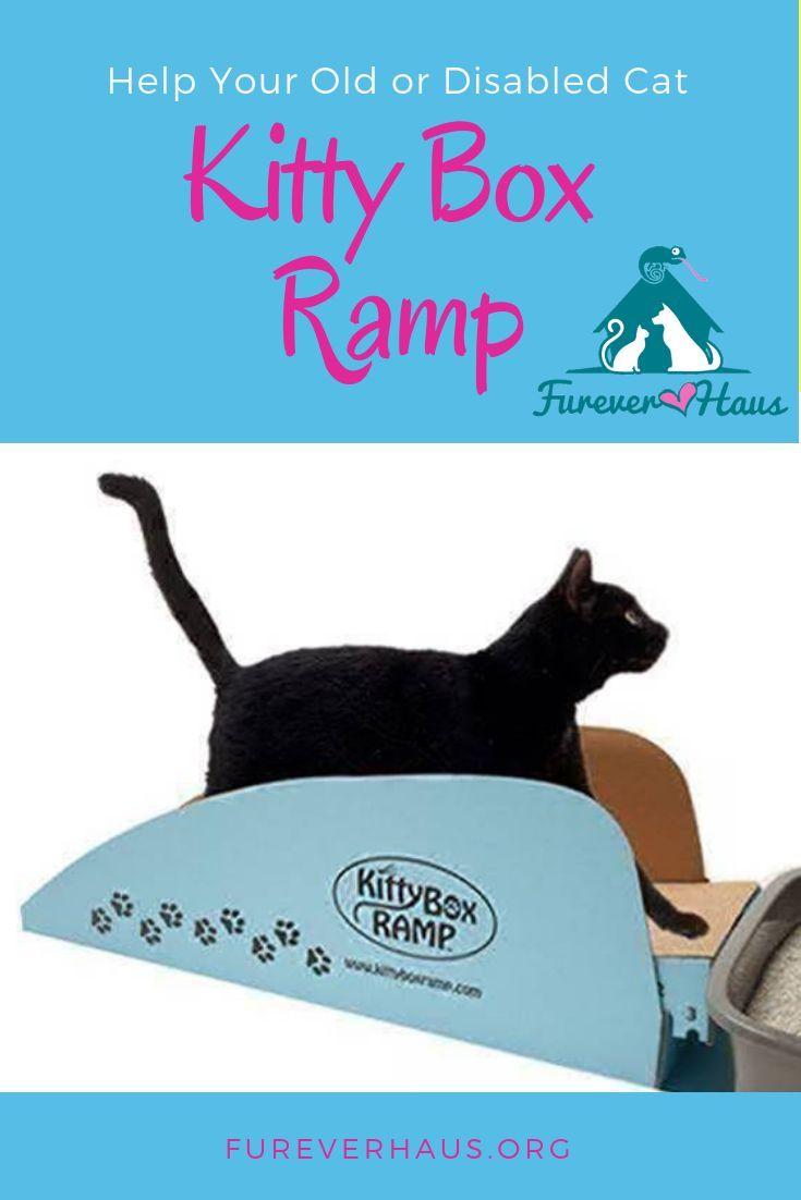 Kitty Box Ramp Cat training litter box, Senior cat care