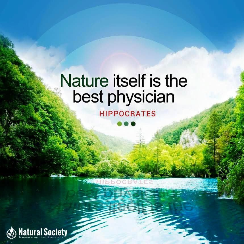 Nature Itself Is The Best Physician Hippocrates Health Quotes