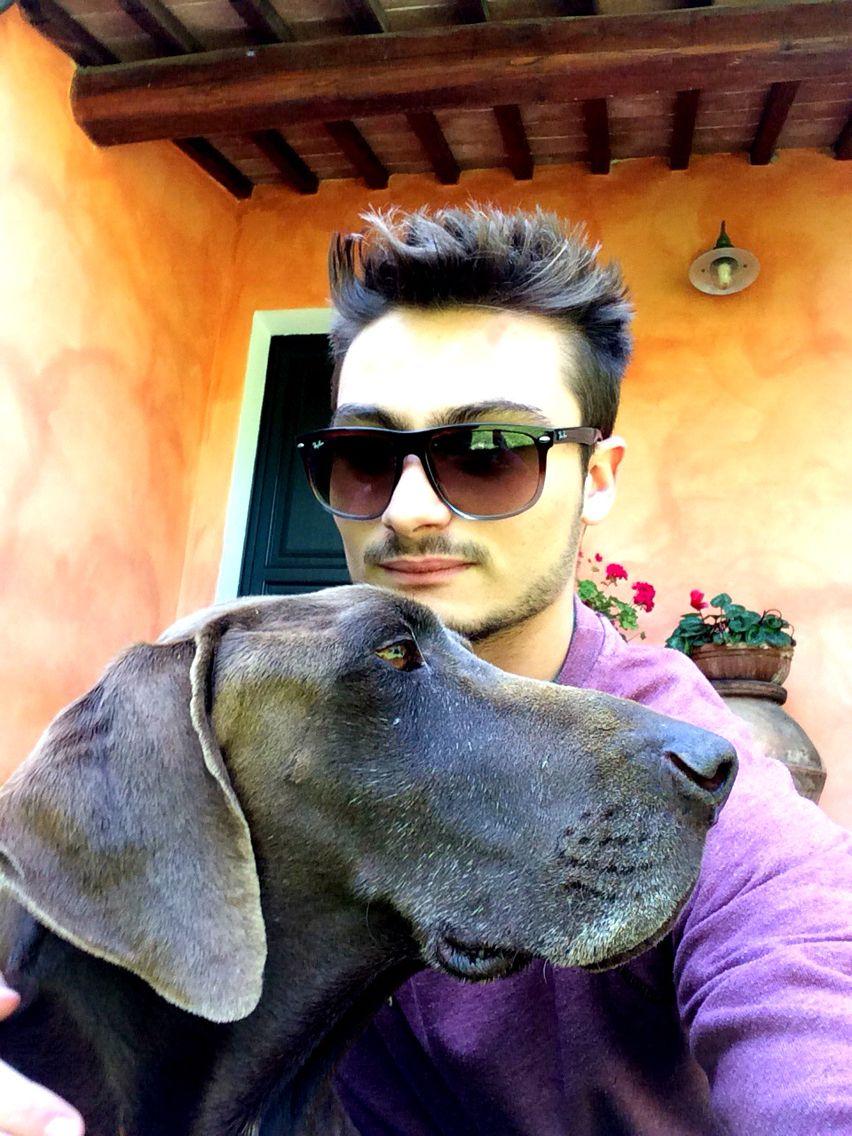 #dog #kurzhaar