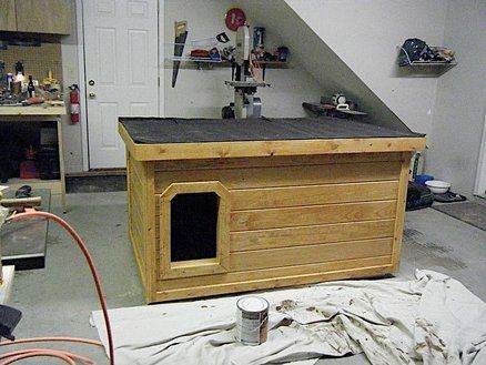 insulated dog house pictures from start to finish | backyard