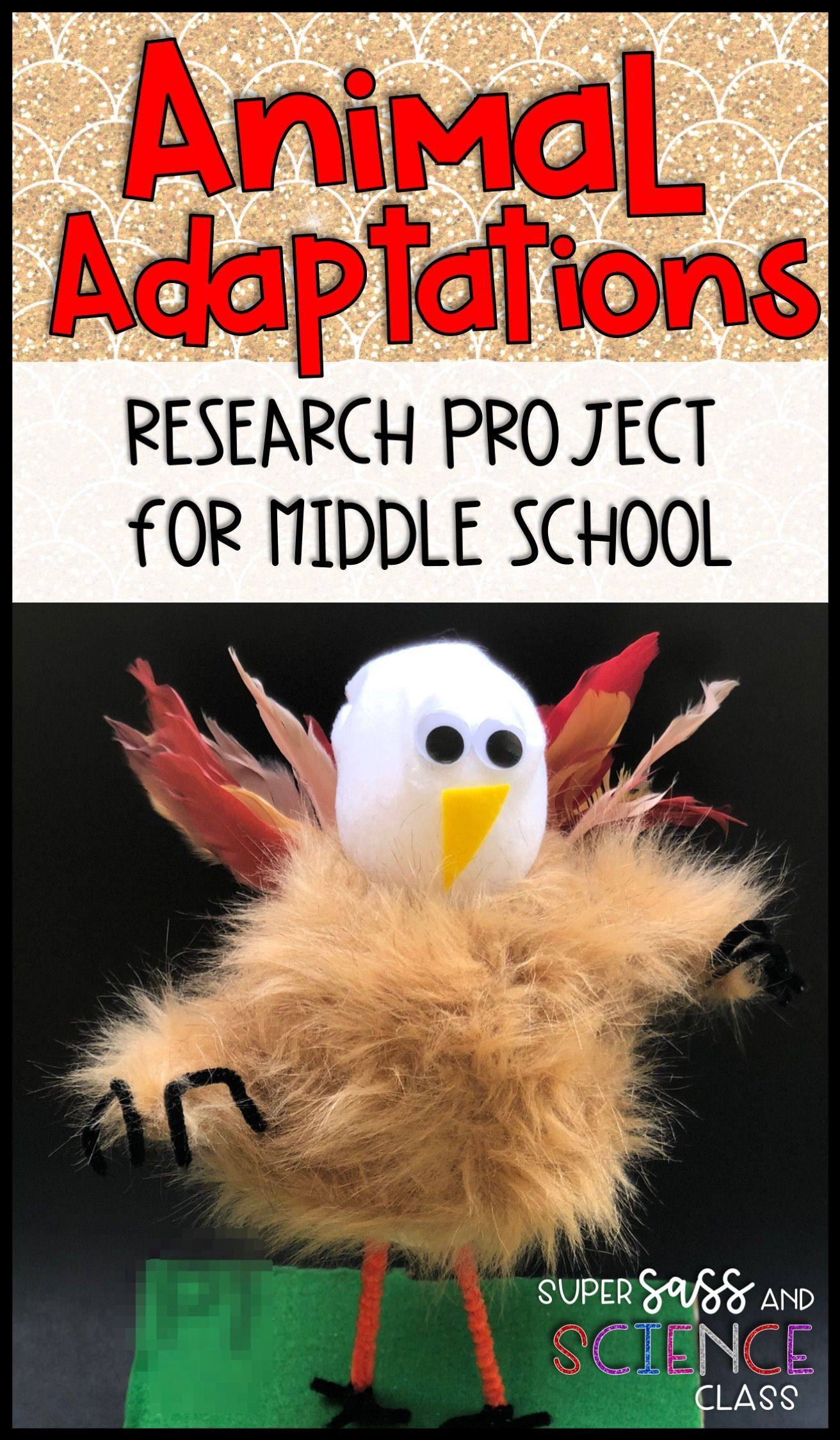 Animal Adaptation Project For Middle School For
