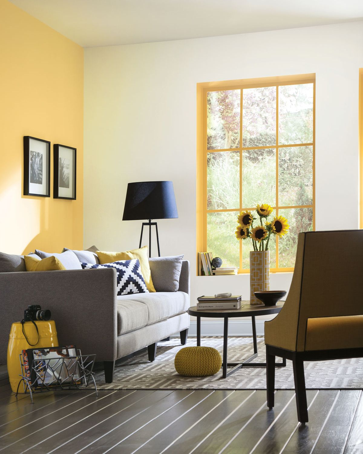 Looking for an idea to help brighten your home painting window trim a sunny color like honey bees sw 9018 lets spring bloom indoors all year long